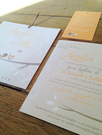 faire-part-mariage-original-theme-oiseaux-retro