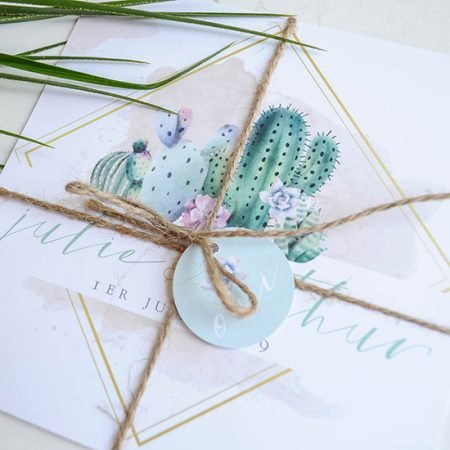 faire-part-mariage-sur-mesure-personnalise-chambery-creatrice-cactus-succulente-mint-pastel-poudre-doux-moderne-plantes-vegetal